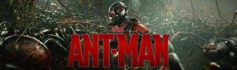 Ant Man Marvel Paul Rudd Superhero