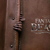 'Fantastic Beasts And Where To Find Them' (2016) - Film Review
