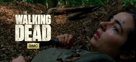 The Walking Dead S7E6 Same Old Story: Tara Chambler Heath